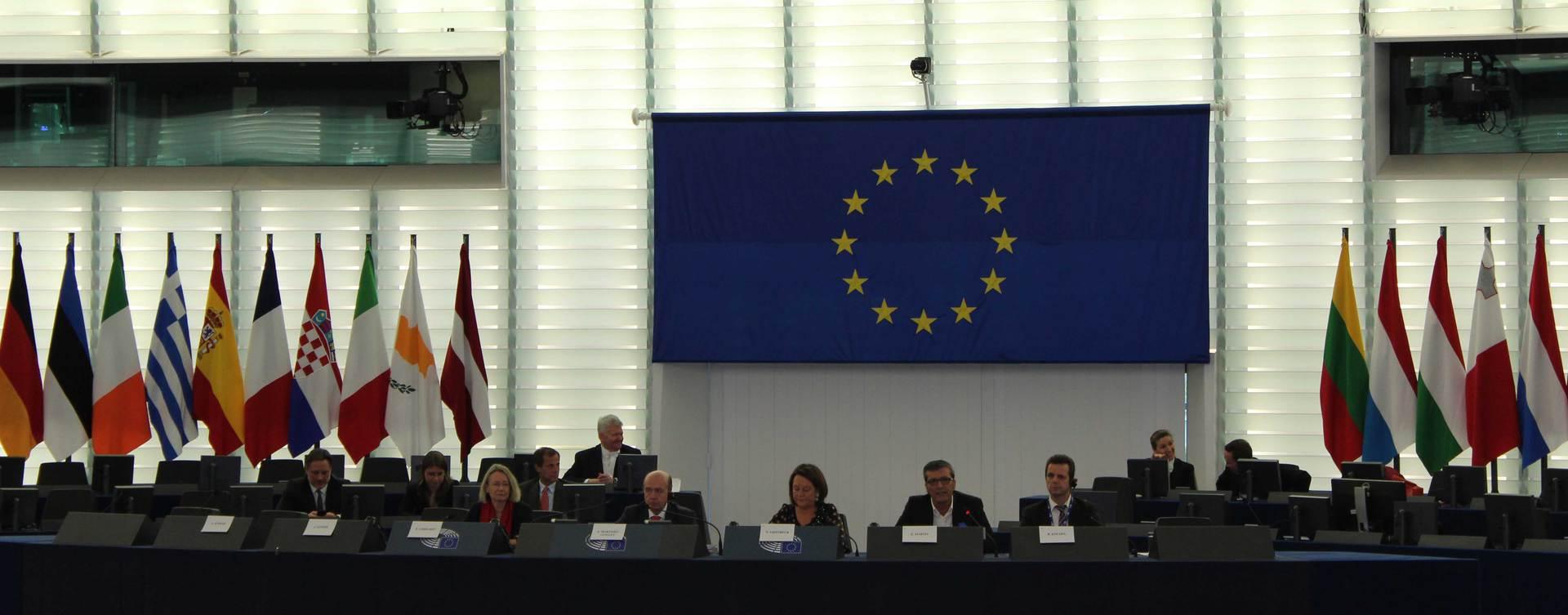 Intressierte Europäer konnten im Plenarsaal des Europäischen Parlamentes fragen an die Abgeordneten des EP stellen.